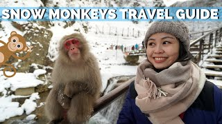 Snow Monkeys of Japan | Jigokudani Monkey Park Nagano Travel Guide
