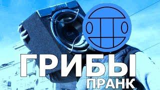 Грибы - Тает Лёд / ПРАНК