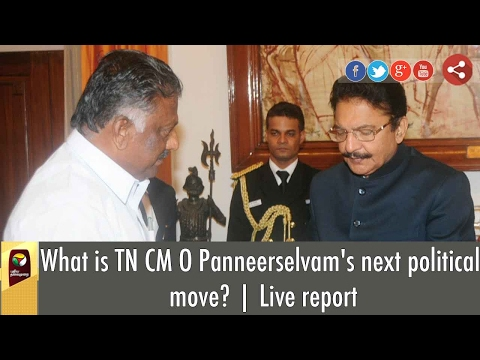 Exclusive: O Panneerselvam's Next Political Move to Form Government in TN