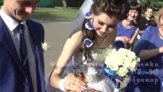 Трейлер Свадьба Света и Сергей 4 июня 2016 года