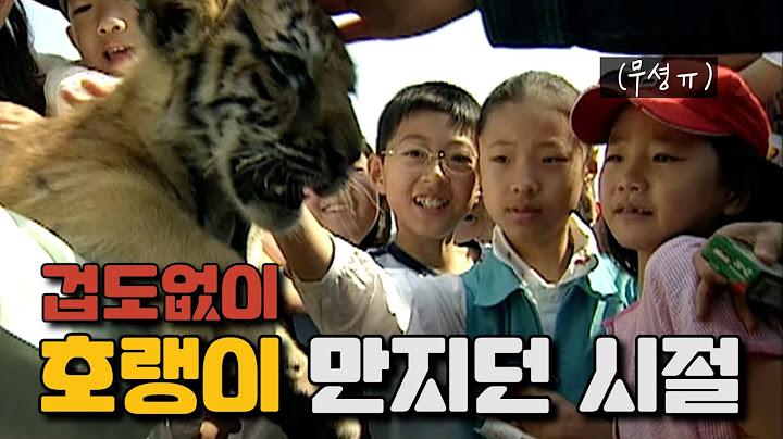 [옛날TV]스마트폰이 없던 시절 어린이날에 우리 아이들은 뭘 했을까?ㅣ20년 전 어린이날(2001년 5월 5일)풍경 ㅣ어린이날 기념 영상