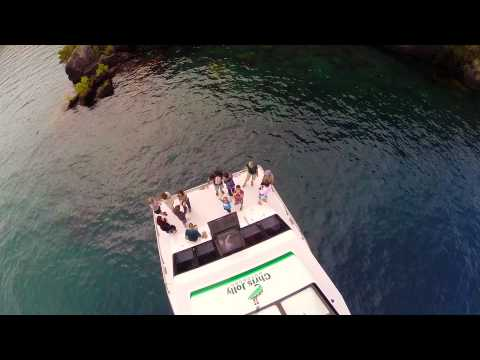 Lake Taupo Scenic Cruise to the Maori Rock Carvings - Video