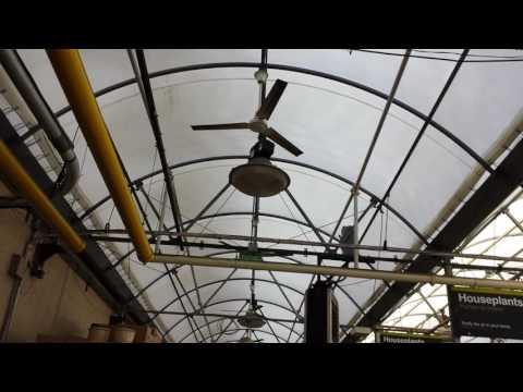 """56"""" Dayton Industrial Ceiling Fans at a Home Depot Garden Center"""