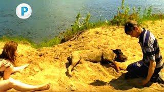 Ротвейлер на реке СОЖ - без монтажа Rottweiler on the river - without mounting