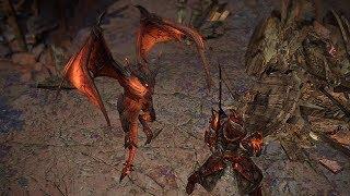 Path of Exile: Dragon Hunter Pet