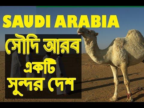 সৌদি আরব একটি সুন্দর দেশ  | Amazing Facts about Saudi Arabia in Bengali