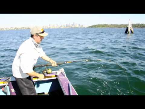 how to hook on live baitfish for mulloway