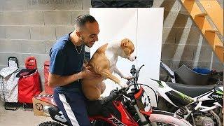 JE FAIS TESTER LA MOTO CROSS A NALA - ELLE A L'AIR DE KIFFÉE ...