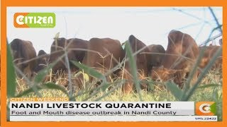 Foot and Mouth disease outbreak in Nandi County