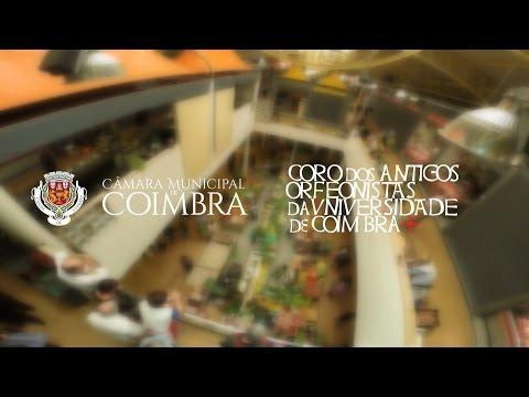 Flash Mob em Coimbra | Mercado Municipal D. Pedro V | Roseira Brava