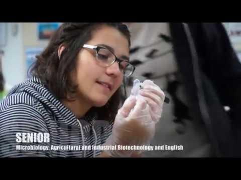 Discover BGPS' half-day STEM program