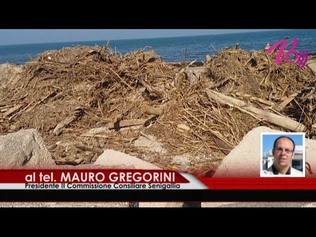 Notizie Senigallia WebTv del 21 03 2017