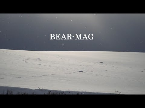 Information pv03 by BEAR'S MAG
