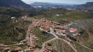 Xylella Fastidiosa interior de Alicante