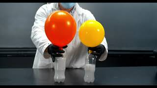 Limiting Reagent Vinegar or Baking Soda?