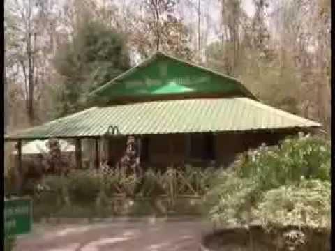 Delabadi Jungle Camp