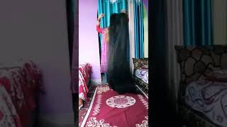 Longest hair woman in uttarakhand queen