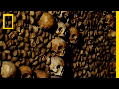 Bare Bones | National Geographic