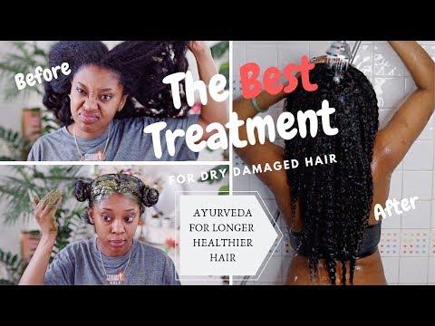 Cassia Obovata Treatment| Improve Growth & Strengthen Hair| Ayurvedic Hair Care