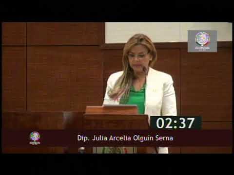 SESIÓN 191017 21 Dip  Julia Olguín Serna
