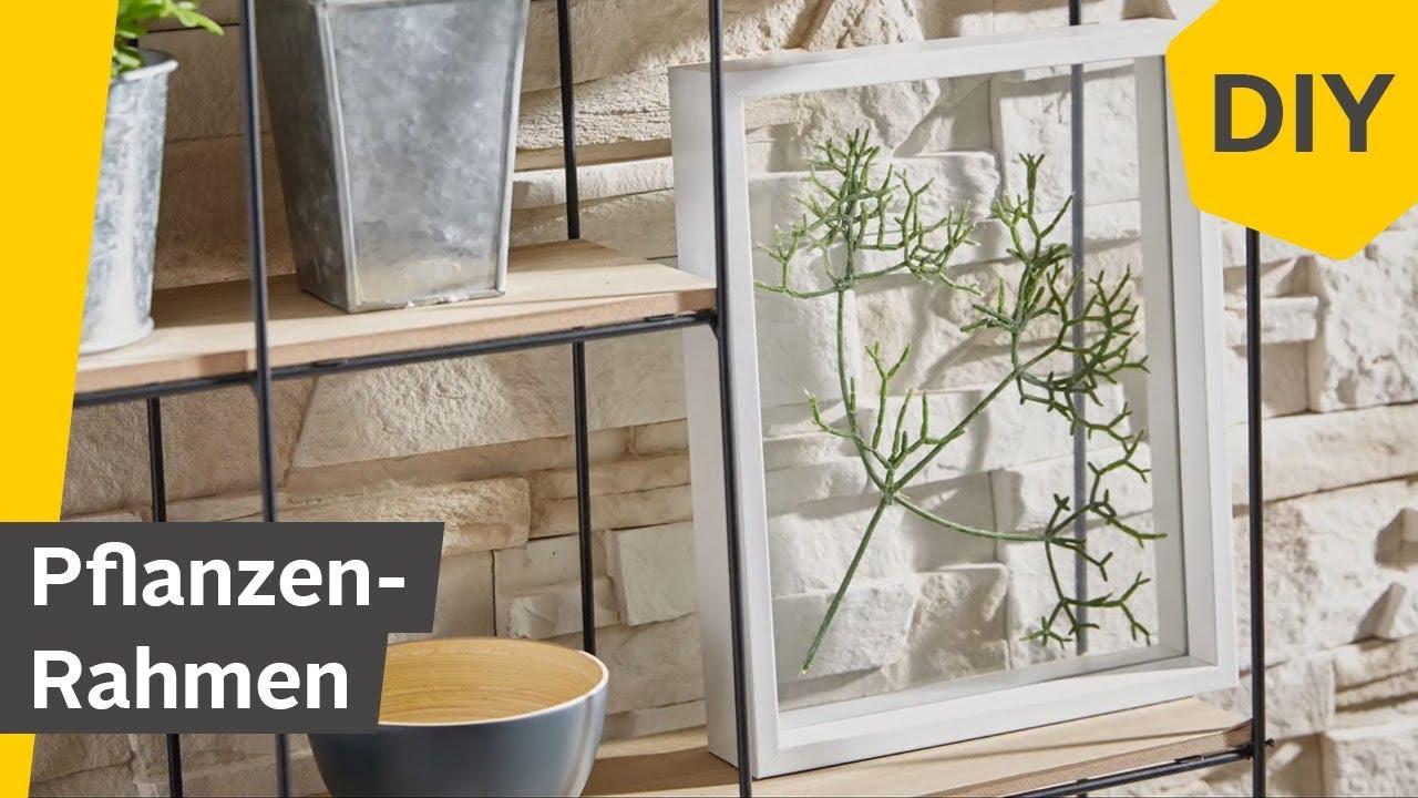 diy pflanzen rahmen selber machen roombeez powered by otto youtube. Black Bedroom Furniture Sets. Home Design Ideas