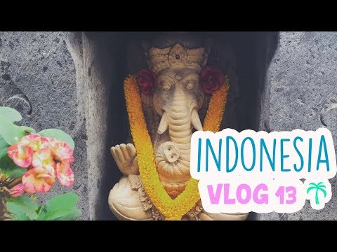 nos-pasa-algo-muy-extraÑo- -indonesia-vlog-13