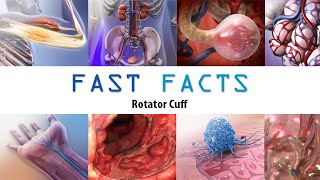 Rotator Cuff: Visible Body Fast Facts