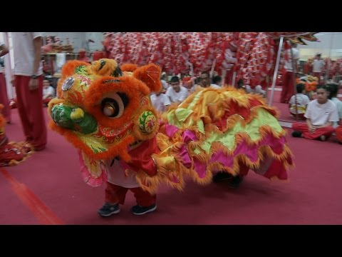 Will Does the Lion Dance | The Little Couple