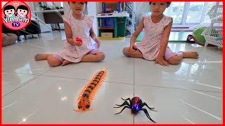 หนูยิ้มหนูแย้ม   แมงมุมตะขาบบังคับ   รีวิวของเล่น EP47