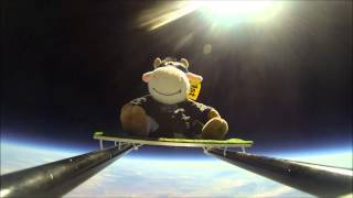 Cow Goes to SPACE - 1080P HD