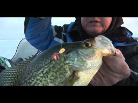 Dave genz on big water crappie youtube for Dave genz fish trap