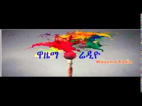 Wazema Podcast 21:Meles legacy on the Ethiopian Economy, PART 3 (Sep 3)