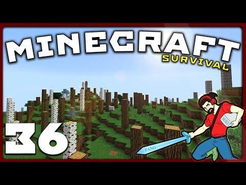 Minecraft Survival | FINALLY, A PLAN!! || [S01E36] Vanilla 1.12 Lets Play