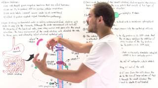 Cholera and G-Protein Coupled Signaling