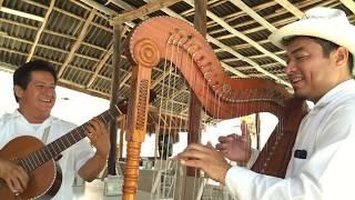 Talento veracruzano el caimán |TIENES QUE VERLO