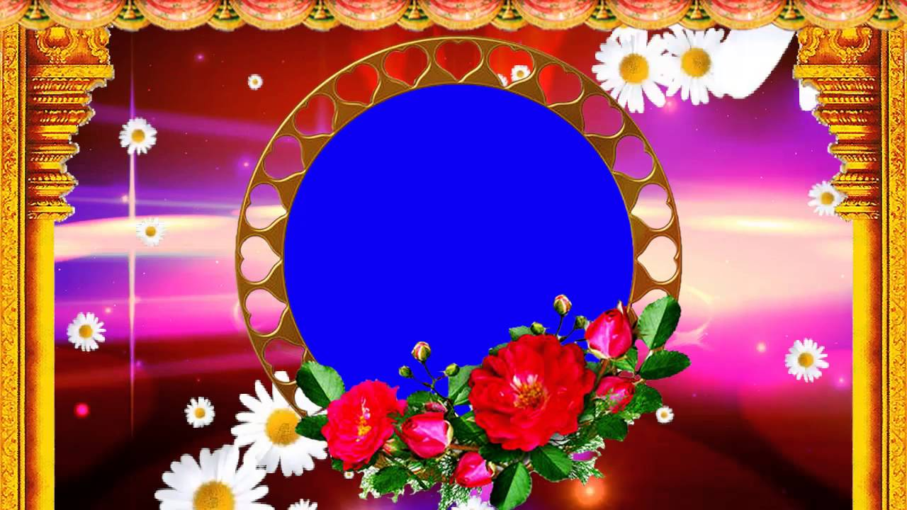 Beautiful Blue Screen Wedding Background Animated Effects Video