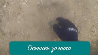 Подводный поиск #34: Осеннее ЗОЛОТО