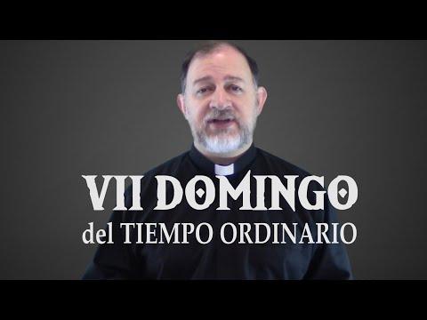 VII Domingo del Tiempo Ordinario - Ciclo A - Sean santos porque Yo su Dios soy santo