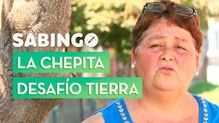 María Vivanco: La Chepita recicladora de Puente Allto - Sabingo