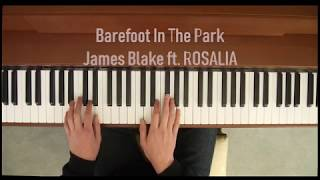 James Blake - Barefoot In The Park ft. Rosalia (Piano Cover)