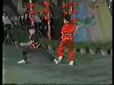 1988 Chinese Wushu