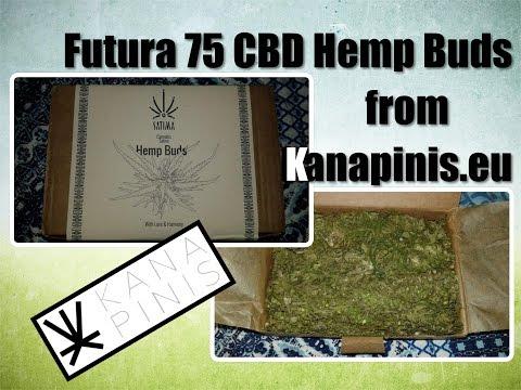 Futura 75 Legal CBD Hemp Buds