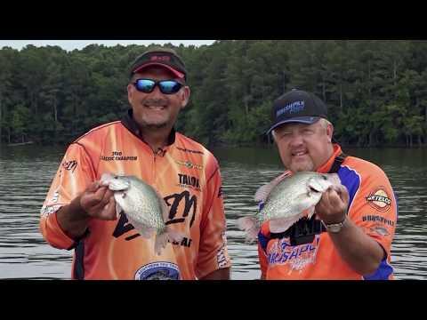 Illinois Summer Crappie | BrushPile Fishing | S03 E02