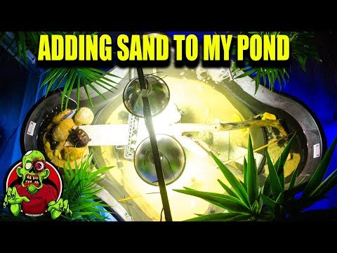 HOW NOT TO ADD SAND - INDOOR TURTLE POND -