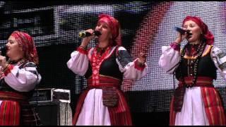 Иван Купала, Кострома, Фестиваль Folkday