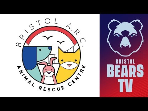 Bears Visit Bristol Animal Rescue Centre