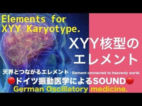 🔴ドイツ振動医学によるXYY核型編|XYY Karyotype by