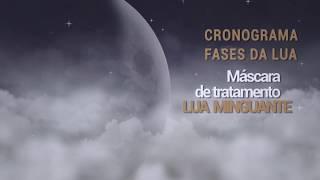LUA MIGUANTE - CRONOGRAMA CAPILAR FASES DA LUA MAZZON NATURE