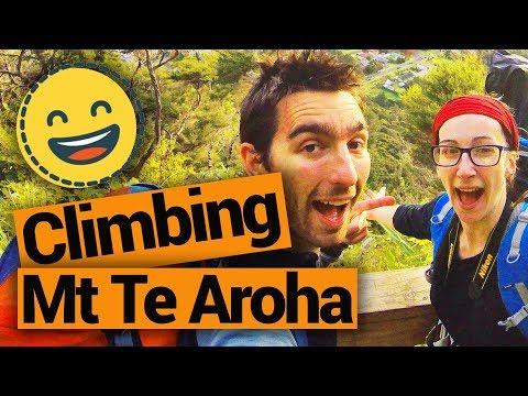 Climbing Mt Te Aroha  - New Zealand's Biggest Gap Year – Backpacker Guide New Zealand