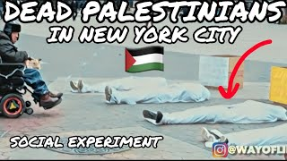 New Yorkers REACT to DEAD PALESTINIANS in NYC Streets! SOCIAL EXPERIMENT! | WAYOFLIFESQ